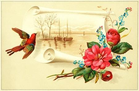 meri cards